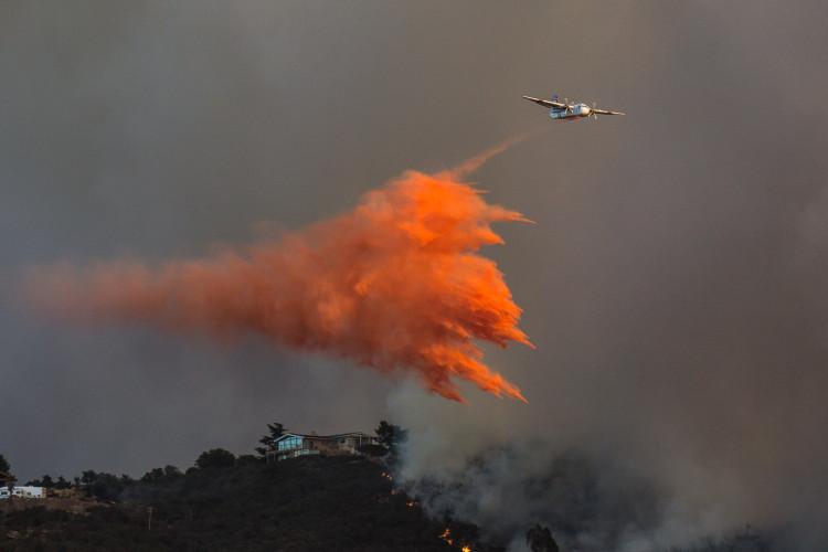 FIRE-SD_CF-41