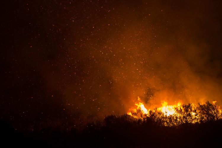 FIRE-SD_CF-488