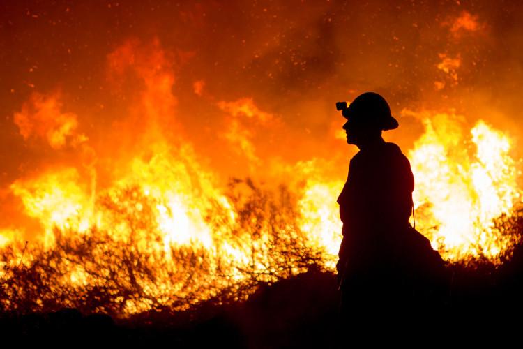 FIRE-SD_CF-542
